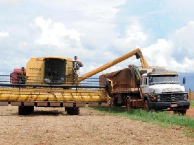 Safra de grãos deve bater recorde este ano, prevê Conab