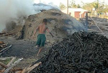 A exploração da mão de obra infantil no país cresceu 4,5%