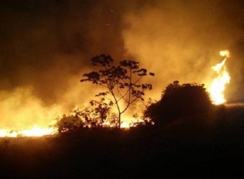 Meio Ambiente e Defensoria acompanham ação do Governo na Chapada