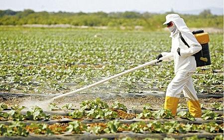Michel Temer pretende aprovar uso de agrotóxicos cancerígenos