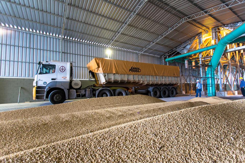 O que levou a Seara Agroindustrial a pedir recuperação judicial