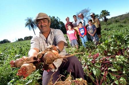 Agricultores familiares participam de Experiências Socioambientais