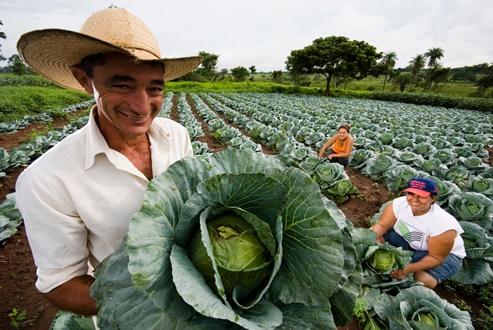 GOVERNO DA BAHIA ANUNCIA REFORÇO DE R$ 70 MILHÕES PARA AGRICULTURA FAMILIAR