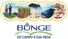 Maior exportador de grãos do Brasil, Bunge está próxima de ser negociada com a Glencore