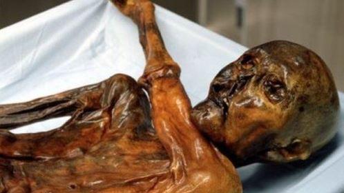 Por que alguns corpos se mumificam naturalmente após a morte?