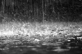 O que produz aquele cheiro gostoso de chuva?