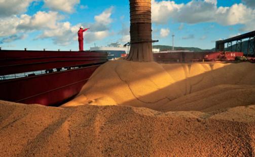 Exportações do agronegócio crescem 12% em junho