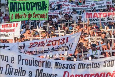 Campanha quer aprovação de PEC que prevê proteção para o Cerrado e a Caatinga