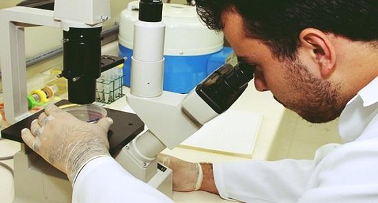 Como resistir aos ataques contra a Ciência no Brasil?