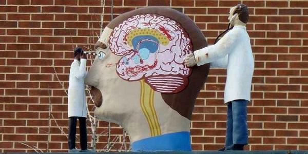 Inovação no combate a doenças neurológicas