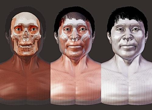 Crânio de indígena do século X será reconstruído em 3D