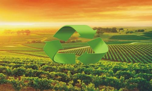 Intensificação sustentável na agricultura é tema de projetos de pesquisa