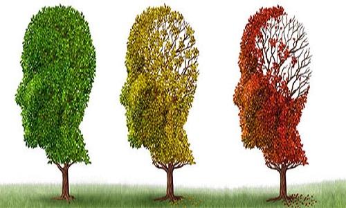OMS: Número de pessoas com demência deve triplicar nos próximos 30 anos