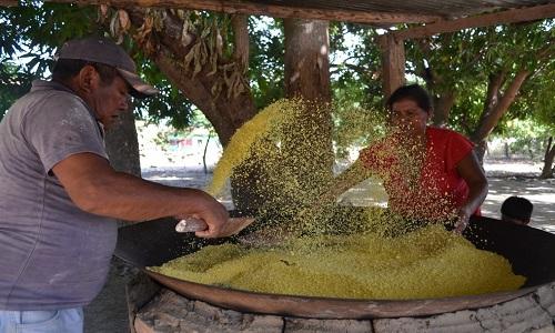 IBGE: Inflação em Salvador tem a maior queda do país no mês de novembro
