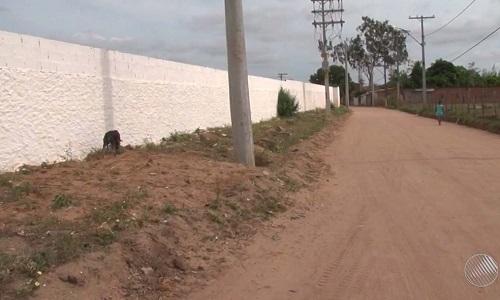 Registrado casos leishmaniose visceral na região de Feira, com uma vitima fatal