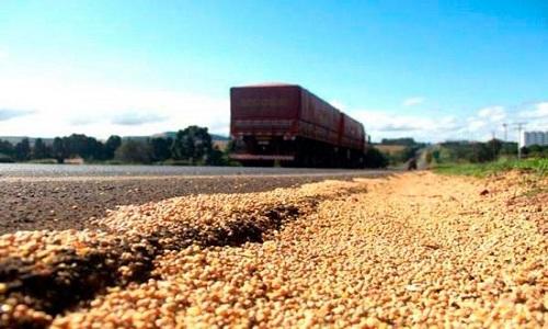 Logística no Brasil preocupa agricultor e exportador de soja