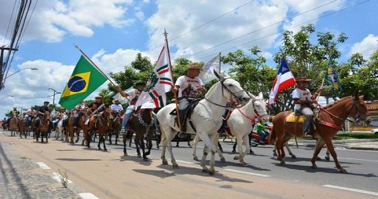 9º Encontro de Muares de Feira de Santana será neste domingo, com 500 animais