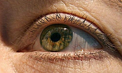 Tratamento com células-tronco restaura visão, afetadas por doença degenerativa