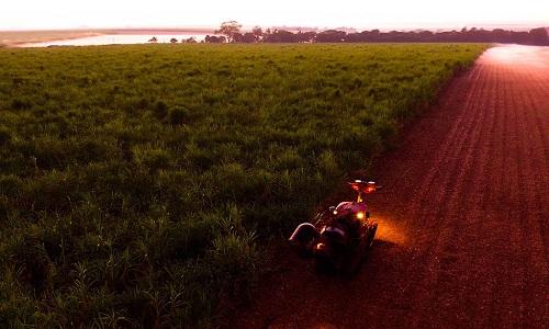Cai a produção de açúcar no Brasil, diz Conab
