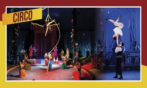 SP recebe primeira edição do Festival Internacional de Circo