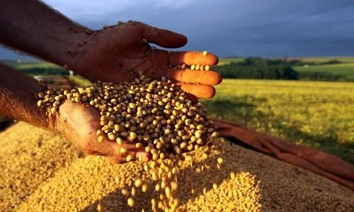 O agronegócio teve um saldo mensal, positivo, de US$ 7,79 bilhões