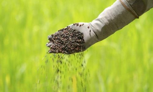 CNA mostra resultados das amostras de fertilizantes coletadas em 4 estados