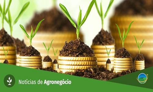 Produção Agropecuária é de R$ 542 bilhões em 2018