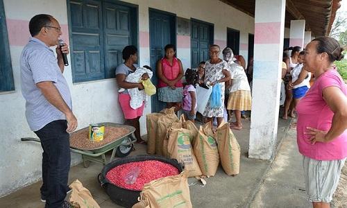 Prefeitura de Feira adquiriu 85 toneladas de sementes selecionadas para pequenos agricultores