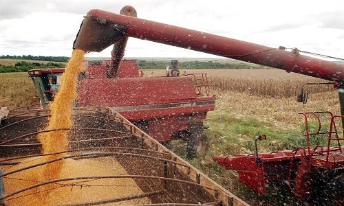 Xico Graziano diz, o agronegócio esquerda se baseia em 'agromitos