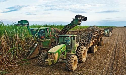 A safra de cana-de-açúcar do Brasil deve cair para 580 milhões