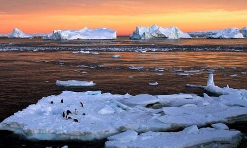 Derretimento acelerado na Antártida perde 2,7 trilhões de toneladas de gelo preocupa Cientistas