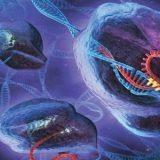 Nova técnica de edição genética dita como revolucionária pode causar mais mutações do que se imaginava