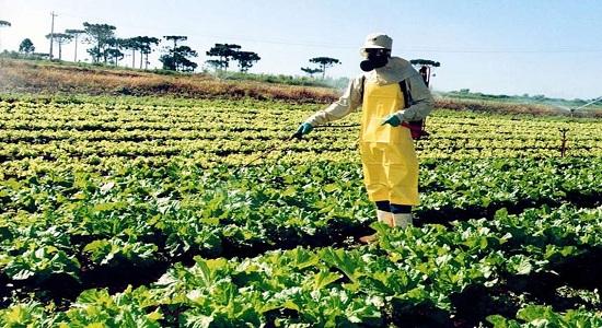 Medicina e agronomia sofrem ataque anti-iluminista
