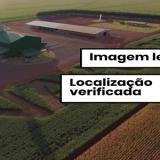 Comprova: plantações com nome de Bolsonaro são verdadeiras