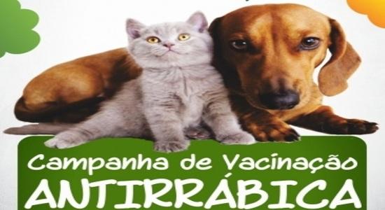 Dia D da vacinação antirrábica será neste sábado (04)