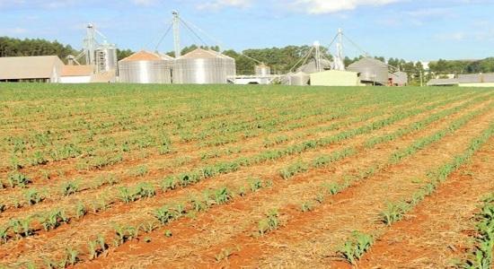 Estudo da CNA mostra perda da competitividade no agro com frete mínimo