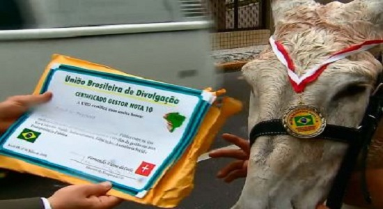 TCM da Bahia investiga 27 prefeituras e 30 Câmaras envolvidas em 'prêmio de melhor gestor'