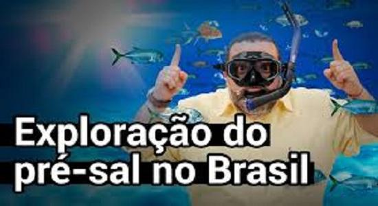 O cinismo dos predadores do Brasil
