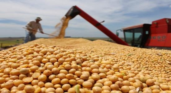 Custo de transporte de grãos sobe até 50% com tabela do frete, diz Abiove