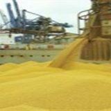 A china registrou  redução na importação de grãos