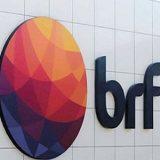 BRF: para 2019 foco é excelência operacional