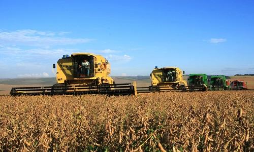 IBGE analisou  safra de grãos 0,2% menor em 2019