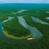 Amazônia se aproxima do ponto de ruptura, diz cientista