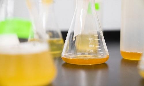 Como um elemento da urina mudou o conceito da vida