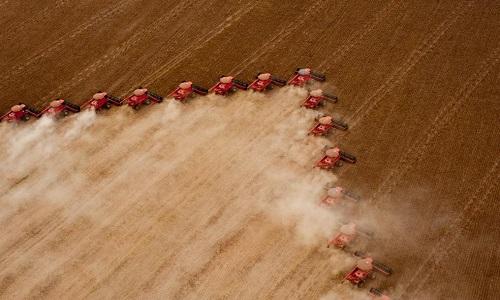 A Conab cortou a  previsão para a safra de soja do Brasil em 3%, e  elevou  a de milho