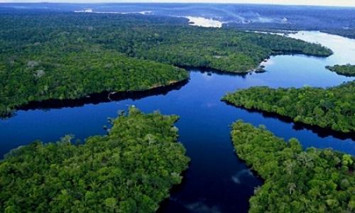 Desmatamento pode elevar temperatura na Amazônia em 1,45°C.