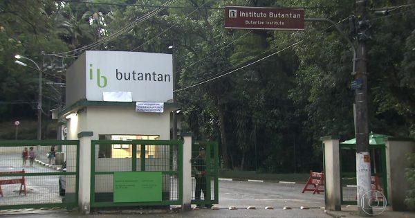 Sucateado e alvo de privatização, Instituto Butantan importa vacinas e soros