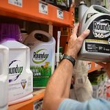 Herbicida mais usado no Brasil causa câncer, conclui júri dos EUA
