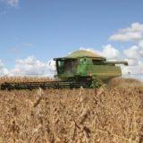 Acordo EUA-China trará prejuízos ao agronegócio brasileiro