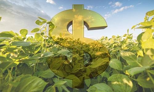 Agronegócio brasileiro contratou mais de R$ 109 bilhões em crédito.